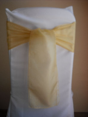 Gold Matt Organza