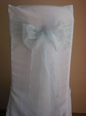 Light Aqua Blue Organza