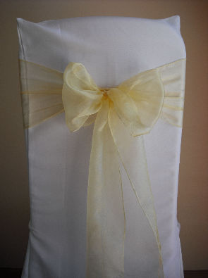 Light Gold Organza